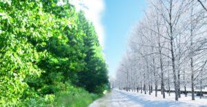 Аксиома. Купи зимой забери летом!